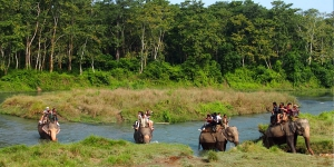 Jungle Safaris in Nepal